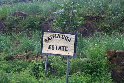 Entrance to the Rathanagiriya estate.