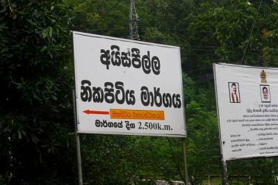 The road was fully concreted and we continued on foot towards Nikapitiya