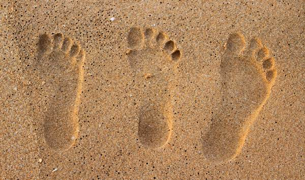 The footprint family
