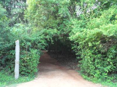 Entrance to Back of Beyond – Pidurangala