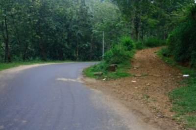 This is junction which the road that goes to Diyaluma factory starts from A4. (200ms passing the 206km post towards wellawaya)