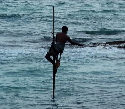 Koggala Stilt Fishing - a fitting scenic end