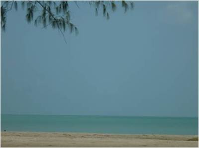 Casuarina Beach at Karrnagar