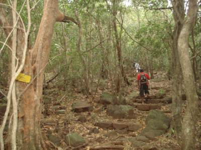 Starting of the Maningala nature trail