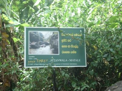 Start of Maningala trail from Etanwela side