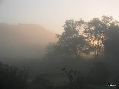 Misty Morning at Morning Side, Suriyakanda