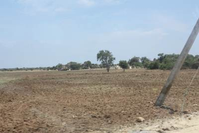Land Ready For Cultivation