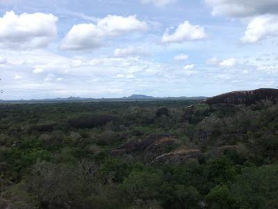 View from Rock Temple