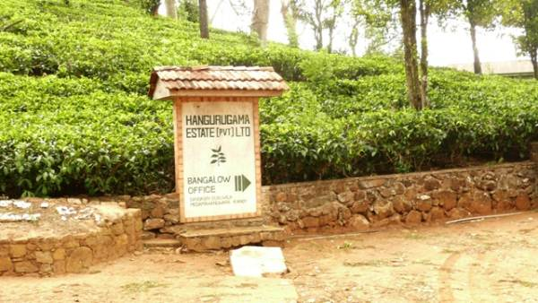 Sign board of the Hangurugama Estate (Way point 6)