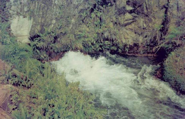 The Leak - A picture taken in 1997 during school educational trip.