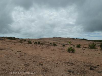 Pitawala Pathana – Very dry (No rain from long time)