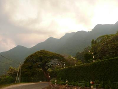 Namunukula range wrapped with mist