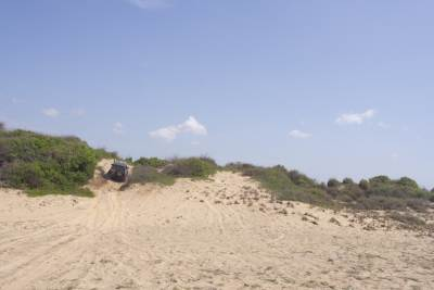 Sand Dune 4X4 Action