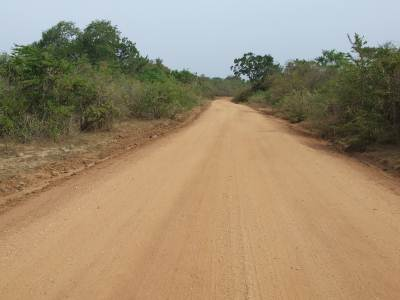 Sithulpawwa Road through Katagamuwa Sanctuary