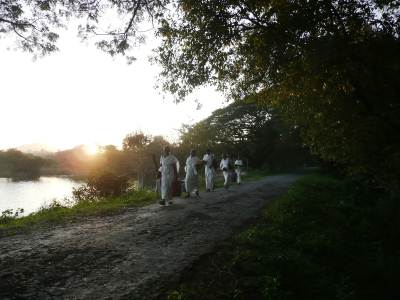 a group of elders in white; walking along the narrow road