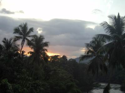 Dawn at Kithulgala
