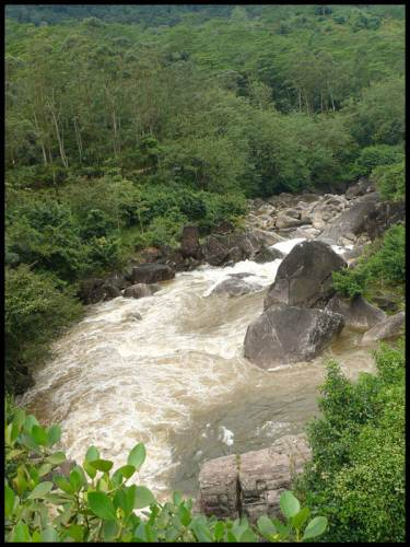 We coudnt reach Laxapana Falls before it comes