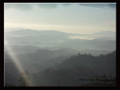 Road from NuwaraEliya to Welimada