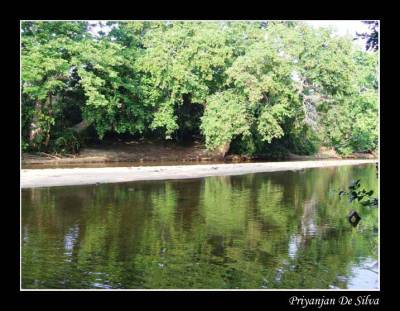 While walking towards Warahana we did not forget to reach the river from time to time and enjoy the serene beauty of it