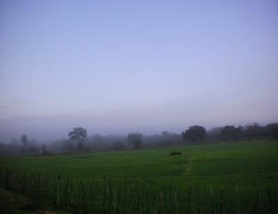 Misty fields along A 14 towards Madu
