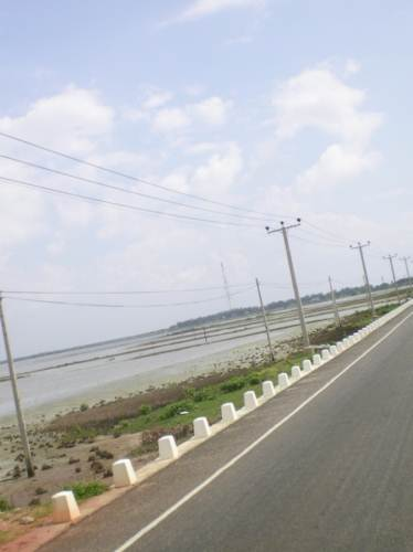 Mannar Causeway  and  Lagoon 