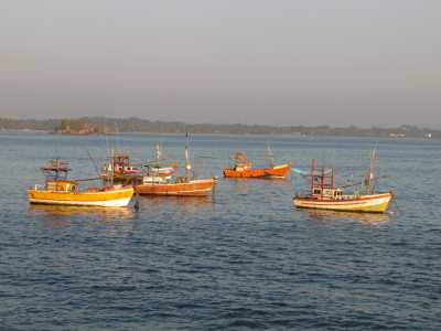 Weligama Fisheries Harbour