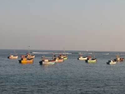 Colourful Boats - Weligama Fisheries Harbour