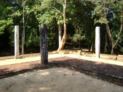 site where an ancient Bodhi tree was to have been planted