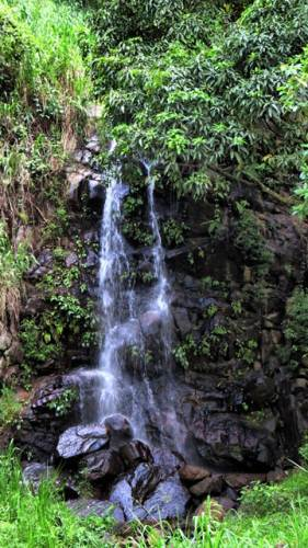 Waterfall no2