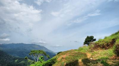 on th way to little adams peak