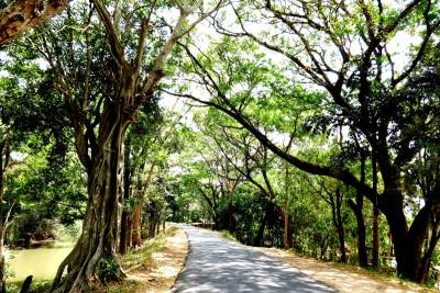 Nice road from Girithale to Bakamuna