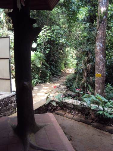 Path seen from the entrance building