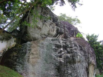 The trunk of the Elephant is seen on the rock