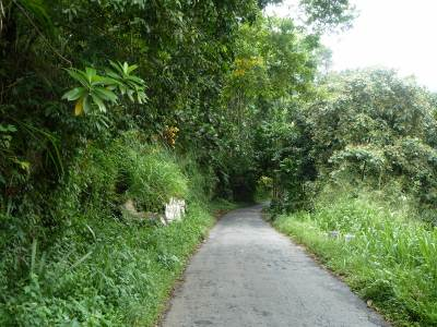 Narrow road towards dedugala..