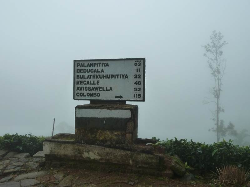 Distances from Winsorforest division - Galamuduna Estate(925m altitude)