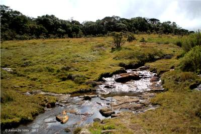 Where the trail crosses the Belihul Oya