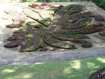 Lovely design made of flower beds
