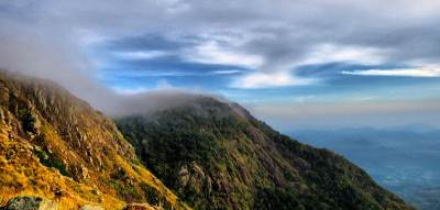 the maragala range kissed by mist