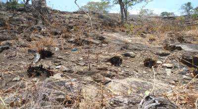 Remains from the recent wild fire at Kuragala – No rain to be seen