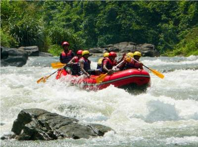 Exciting Rapids
