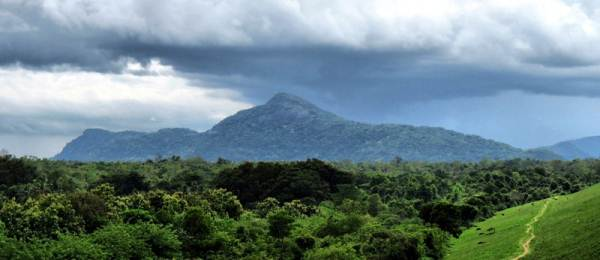 the tallest peak is Degalawalakanda and the not so tall one is Mulagama peak