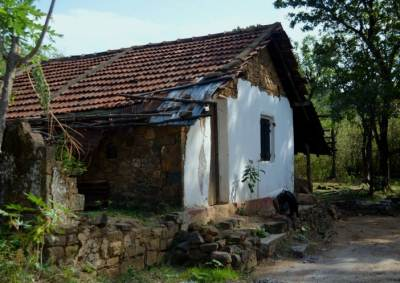 The only house in a fairly good condition at Walpolamulla