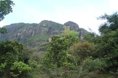 A view of the mountain from the below