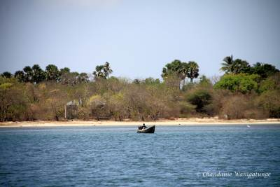 Fishing in less troubled waters