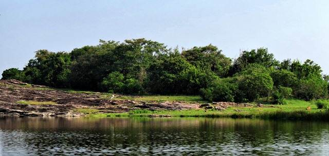 rock ponds around buddangala