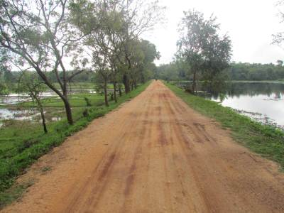 Road on a tank bund