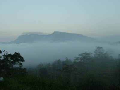 Nawalapitiya covered in mist with as seen from talawakelle road..