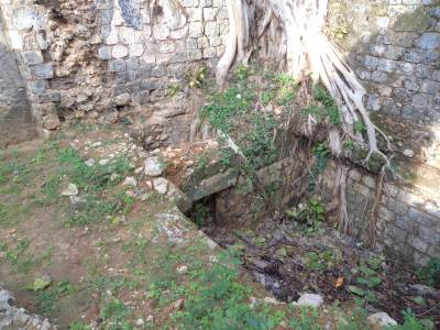 BACK YARD – BELIEVED TO BE AN UNDERGROUND TUNNEL