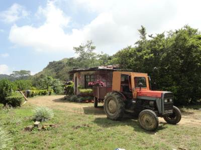Old bungalow and the tractor which takes tea leaves to the town