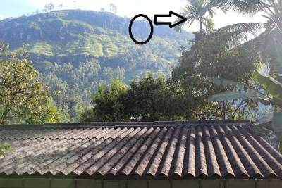 The arrow is the direction we want to go. BTW you can see the roof of our home